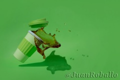 Plastic cup of coffee falling and spilled on a green background.